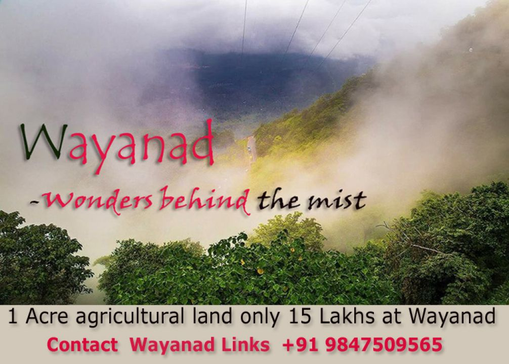 1 Acre agricultural land for sale at Kenichira Wayanad just 15 Lakhs