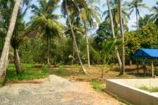 30 to 40 cent  residential land near indo american hospital and kalathil resort