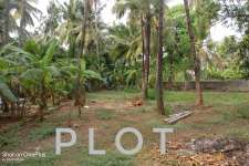 18 Cent Land For Sale in Kannur, Near New bus stand