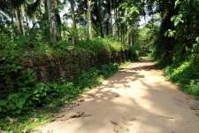 18 cent of plane land for sale in thamarassery